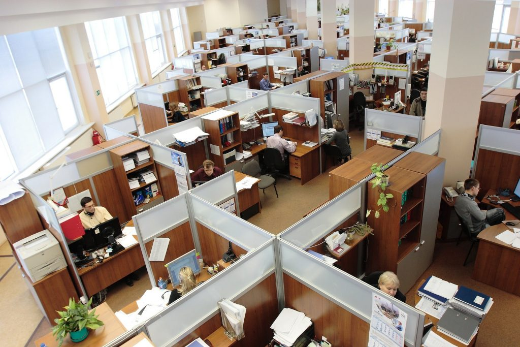 image of Architects in cubicles